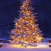 Download 3D Christmas Live Wallpaper 1.5 APK