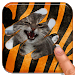 Download Scratch and guess the animal 8.3 APK