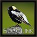 Download Bobolink Bird Chirping Sounds 1.0 APK