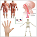 Download Body Parts Name and Pictures 18.08.08 APK