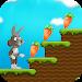 Download Bunny Run 1.3 APK
