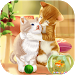 Download Cartoon Cute Jerry Cat 1.1.8 APK