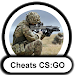 Download Cheat-codes CS:GO 1.2 APK