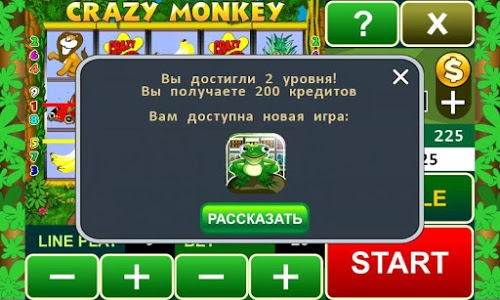 screenshot of Crazy Monkey slot machine version 16