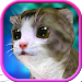 Download Cute Kitten Friends Run 3D 1.0 APK