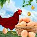 Download Egg Catcher surprise 1.1.24 APK