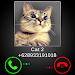 Download Fake Call Cat Joke 1.7 APK