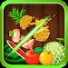 Download Fruit Slice Deluxe 1.1.2 APK