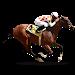 Download Ganyan Canavarı - At Yarışları 3.1.9 APK