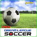 Download Dream League Soccer New Guides 3 APK