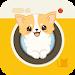 Download Hellopet mini - Chihuahua and photo fun 1.0.5 APK
