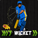 Download Hit Wicket Cricket 2018 - Indian League Game 7.0.0 IPL 2018 APK