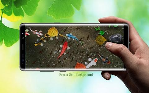 Download Koi Free 3D Live Wallpaper 1.0 APK