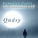 Download Kumpulan Hadits Qudsy 1.3 APK