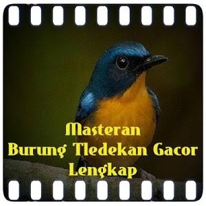 Download Masteran Burung Tledekan Gacor 1.0 APK