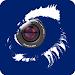 Download N_eye 2.3.4 APK