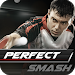 Download Perfect Smash 2016 2.2 APK