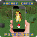 Download Pocket Pixelmon catch 1.0 APK