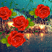 Download Roses Love Drops 1.1.4 APK