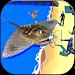 Download Sea Monster Simulator 1.3 APK