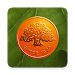 Download Swedbank private  APK