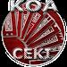 Download THE1 KOA CEKI 1.5.25 APK