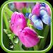 Download Tulips Live Wallpaper 1.0.6 APK