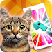 Download Ultrasound. Cat whistle 1.2 APK