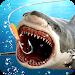 Download Wild Fishing 4.1.0 APK