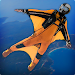 Download WingSuit VR 1.0 APK