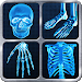 Download X-Ray Full Body Prank 1.5 APK